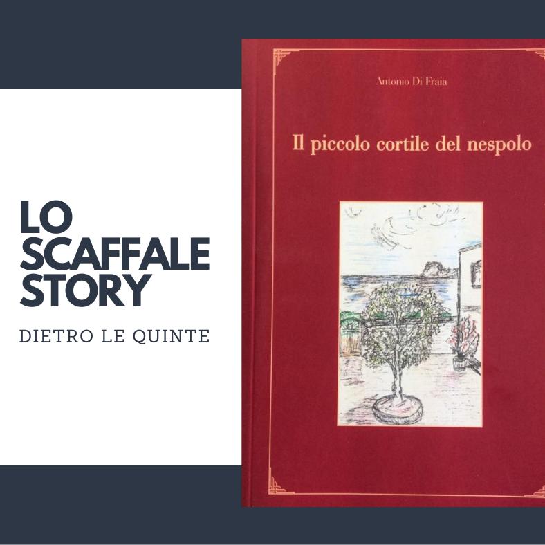 Il piccolo cortile del nespolo; Antonio Di Fraia
